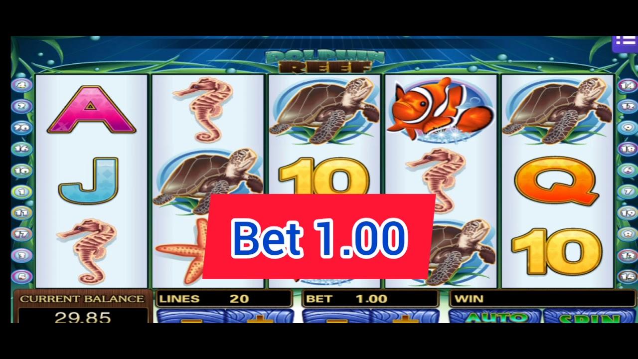 Mega888 ll today 2021 SPIN ll MODAL KECIK dpt bonus cuci$$$ ll dolphin reef 🐳🐬